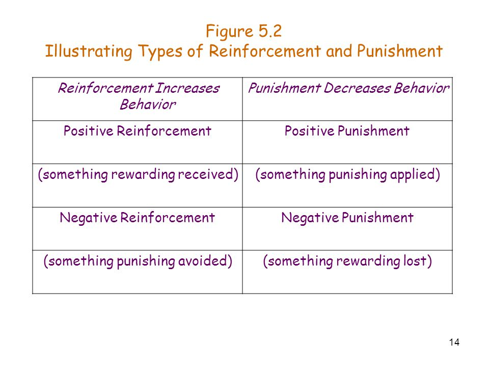 14 Figure 5.2 Illustrating Types of Reinforcement and Punishment Reinforcement Increases Behavior Punishment Decreases Behavior Positive Reinforcement