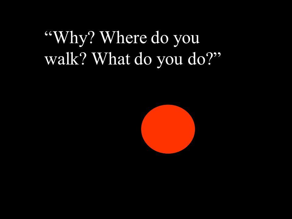 """Why?"" ""Why? Where do you walk? What do you do?"""