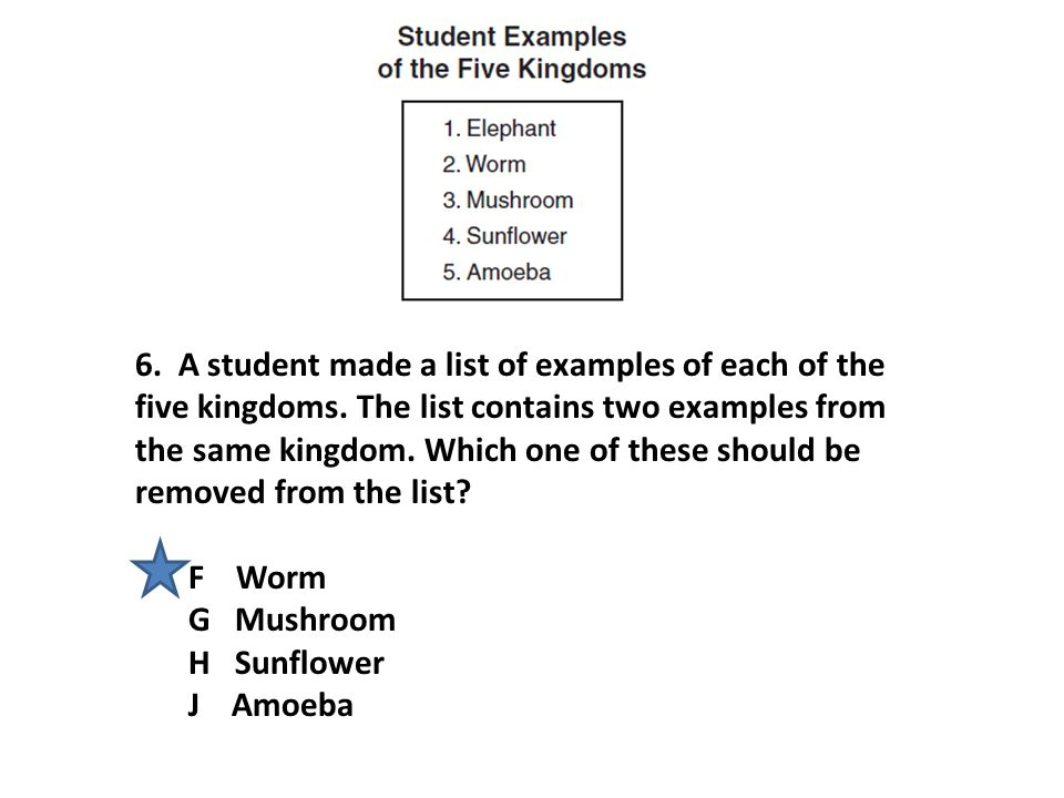 6.A student made a list of examples of each of the five kingdoms.