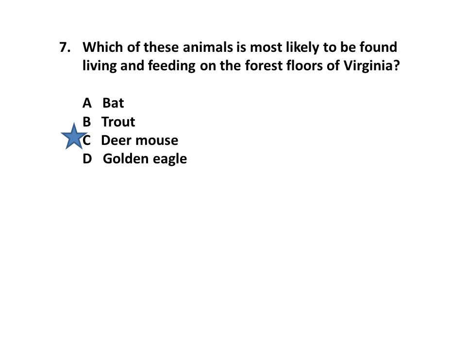 7.Which of these animals is most likely to be found living and feeding on the forest floors of Virginia.