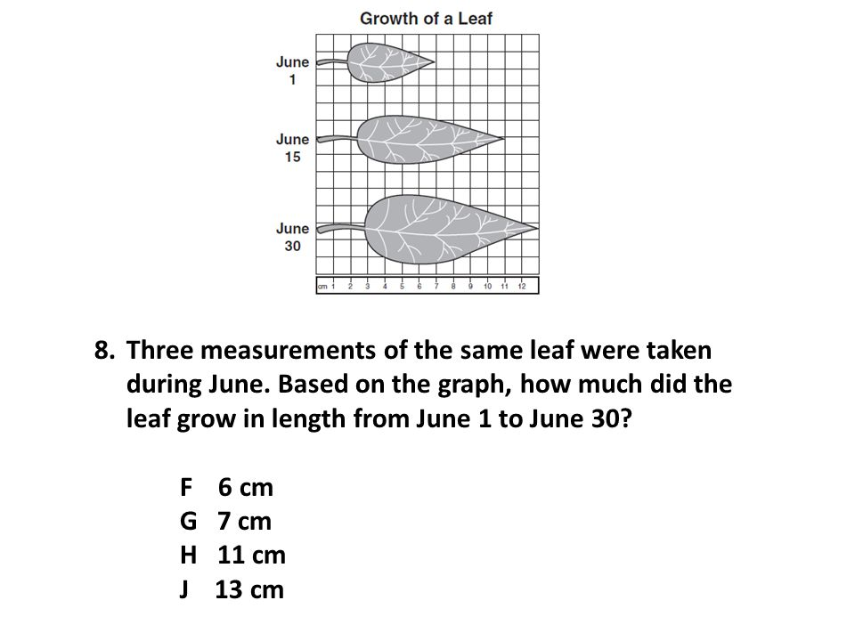 8.Three measurements of the same leaf were taken during June.