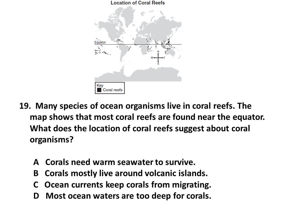 19.Many species of ocean organisms live in coral reefs.
