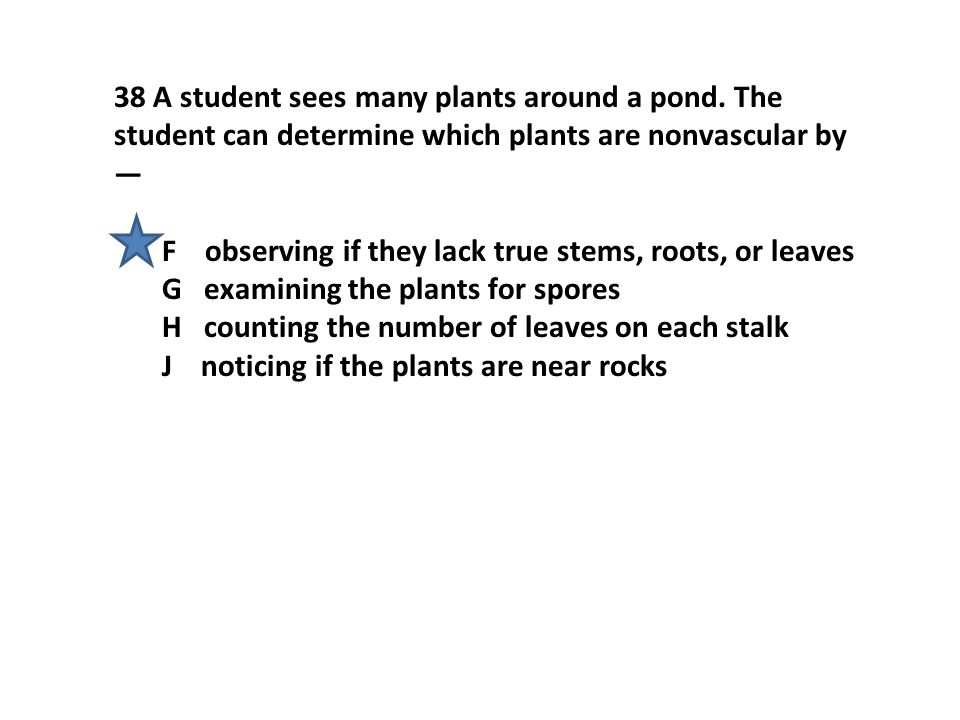 38 A student sees many plants around a pond.