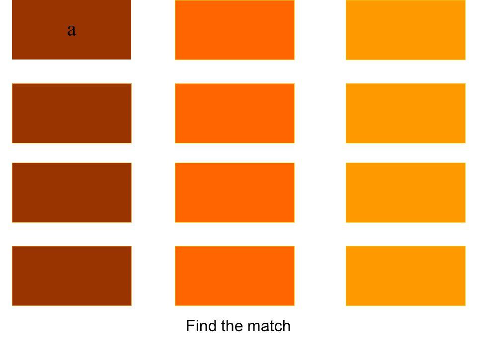 Find the match qhest q'wenp'