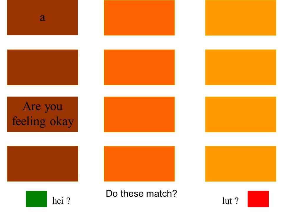 Do these match? ni ku qhes Are you feeling okay hei ?lut ?