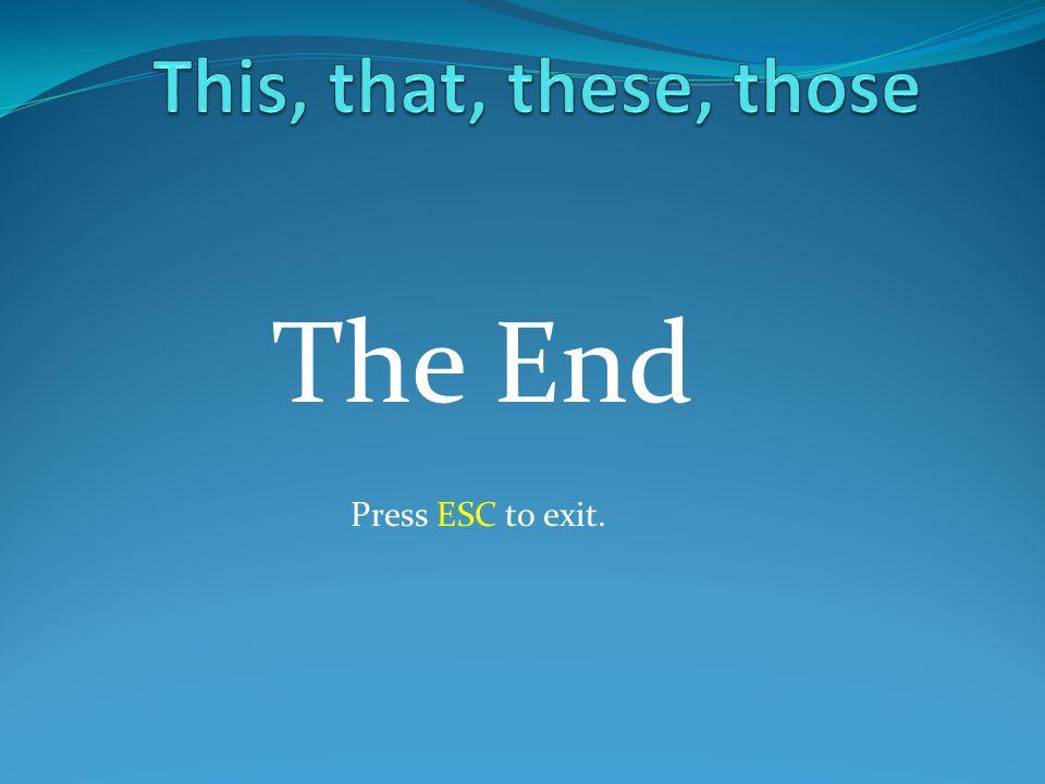 Press ESC to exit. The End