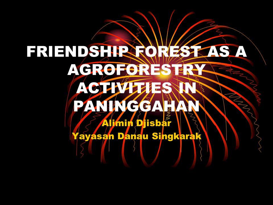 FRIENDSHIP FOREST AS A AGROFORESTRY ACTIVITIES IN PANINGGAHAN Alimin Djisbar Yayasan Danau Singkarak