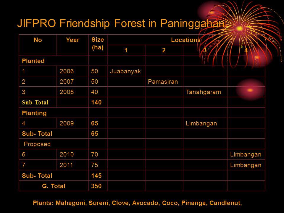 JIFPRO Friendship Forest in Paninggahan: NoYearSize (ha) Locations 1234 Planted 1200650Juabanyak 2200750Pamasiran 3200840Tanahgaram Sub-Total 140 Planting 4200965Limbangan Sub- Total65 Proposed 6201070Limbangan 7201175Limbangan Sub- Total145 G.