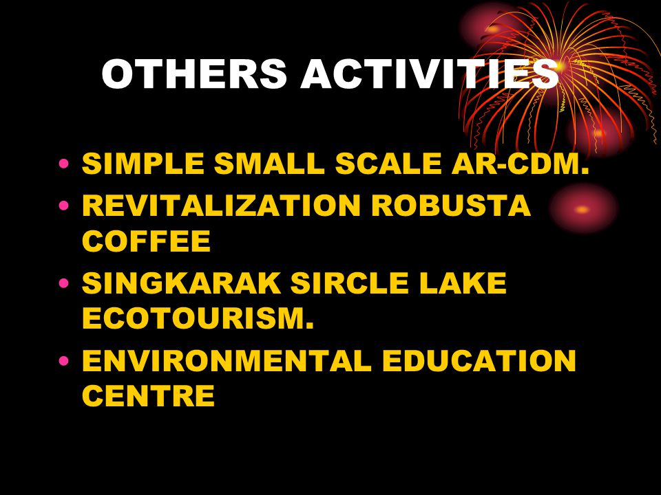 OTHERS ACTIVITIES SIMPLE SMALL SCALE AR-CDM.