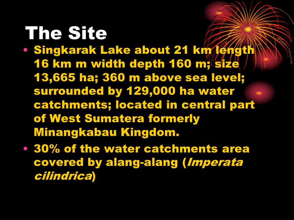 The Site Singkarak Lake about 21 km length 16 km m width depth 160 m; size 13,665 ha; 360 m above sea level; surrounded by 129,000 ha water catchments; located in central part of West Sumatera formerly Minangkabau Kingdom.