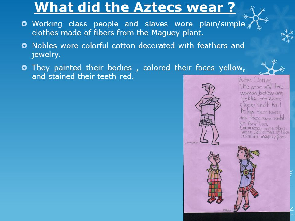Different class of Aztecs 1.The Nobles were the highest class such as priests, government, advisor or warriors.