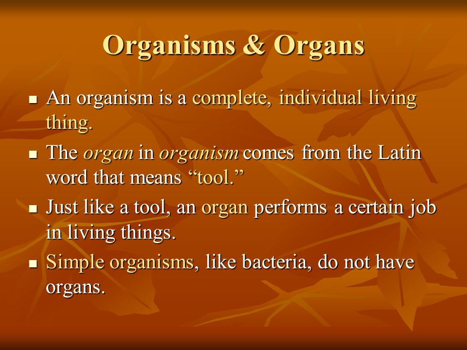 How Organisms Are Classified Living things can be very different from one another.