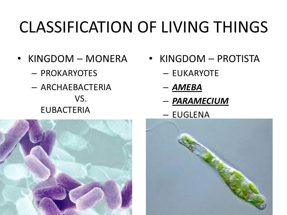 CLASSIFICATION OF LIVING THINGS KINGDOM – MONERA – PROKARYOTES – ARCHAEBACTERIA VS.