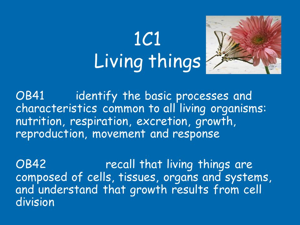 Every single living organism carries out the same basic processes – different organisms just carry them out in different ways….
