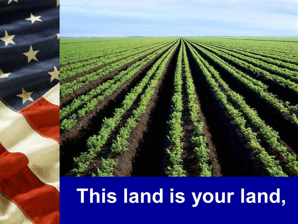 This land is your land,