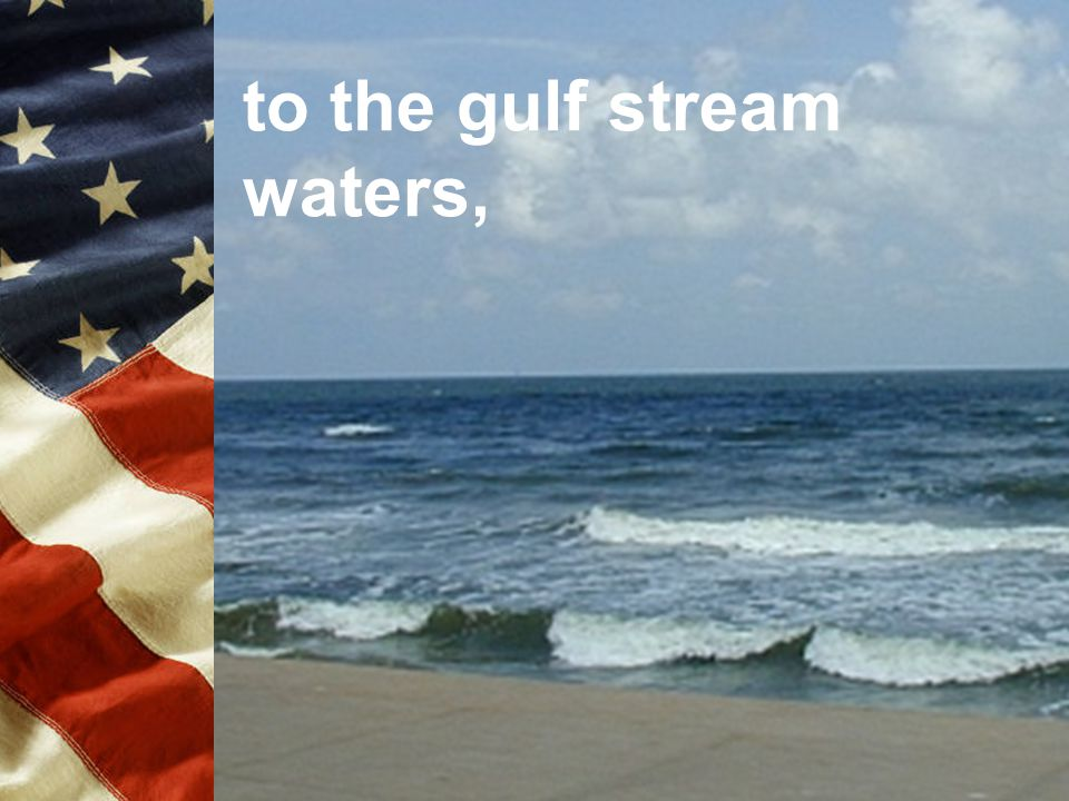 to the gulf stream waters,