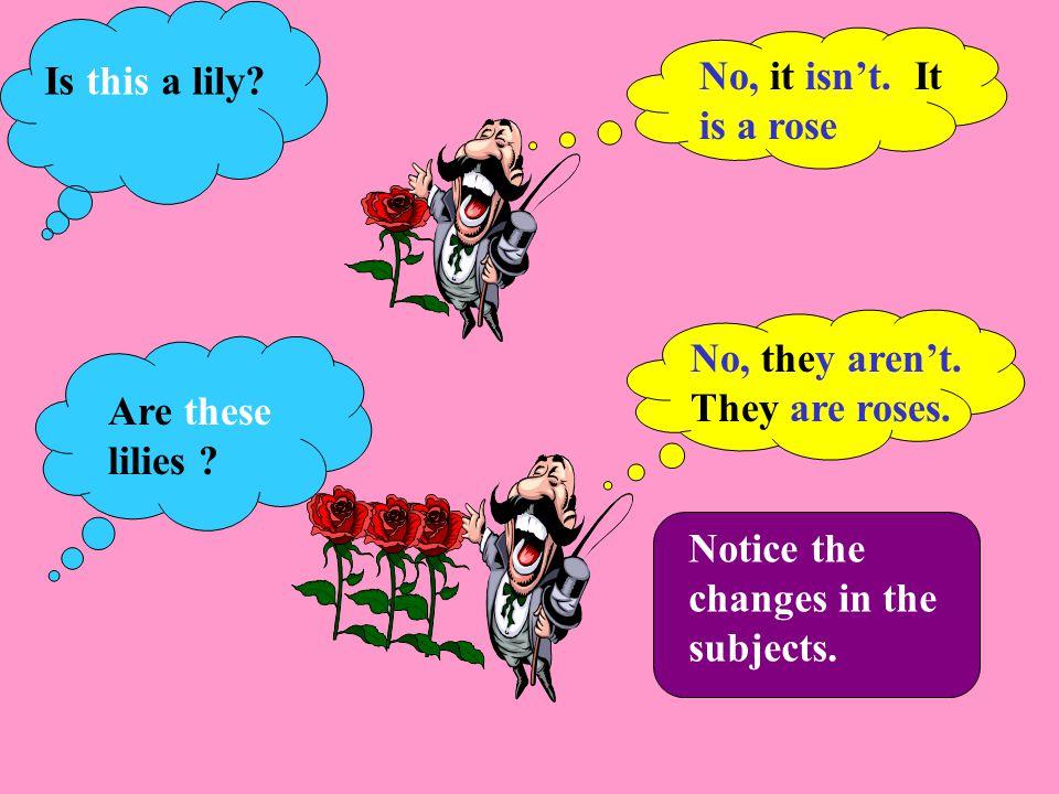 No, it isn't.It is a rose. No, they aren't. They are roses.