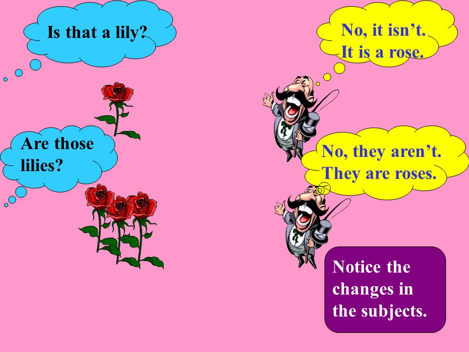 No, it isn't. It is a rose. No, they aren't. They are roses.