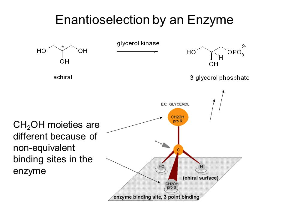 CH 2 OH moieties are different because of non-equivalent binding sites in the enzyme Enantioselection by an Enzyme