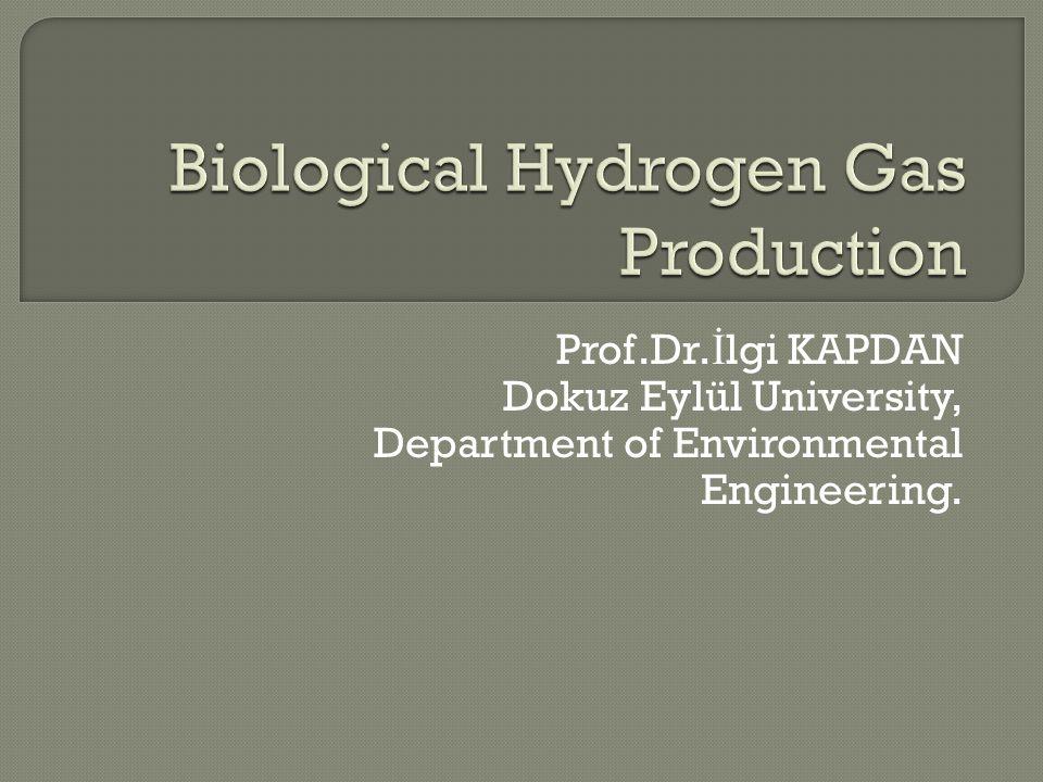Prof.Dr. İ lgi KAPDAN Dokuz Eylül University, Department of Environmental Engineering.