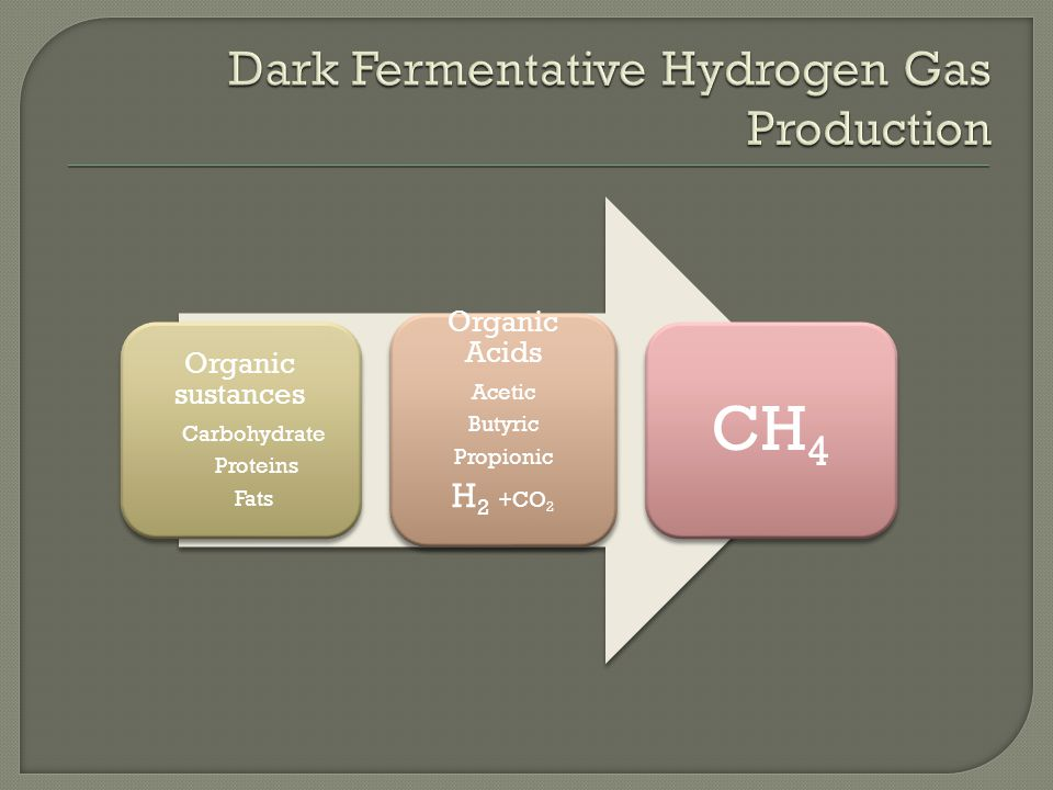Organic sustances Carbohydrate Proteins Fats Organic Acids Acetic Butyric Propionic H2 +CO2 CH4