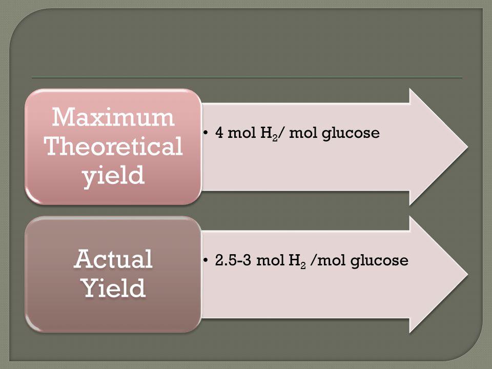 4 mol H 2 / mol glucose Maximum Theoretical yield 2.5-3 mol H 2 /mol glucose Actual Yield