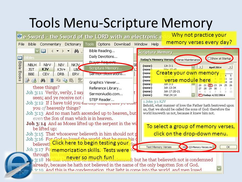 Tools Menu-Scripture Memory To select a group of memory verses, click on the drop-down menu.
