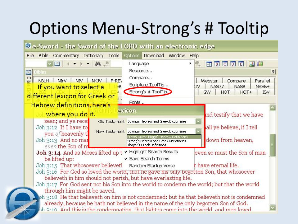 Options Menu-Strong's # Tooltip If you want to select a different lexicon for Greek or Hebrew definitions, here's where you do it.