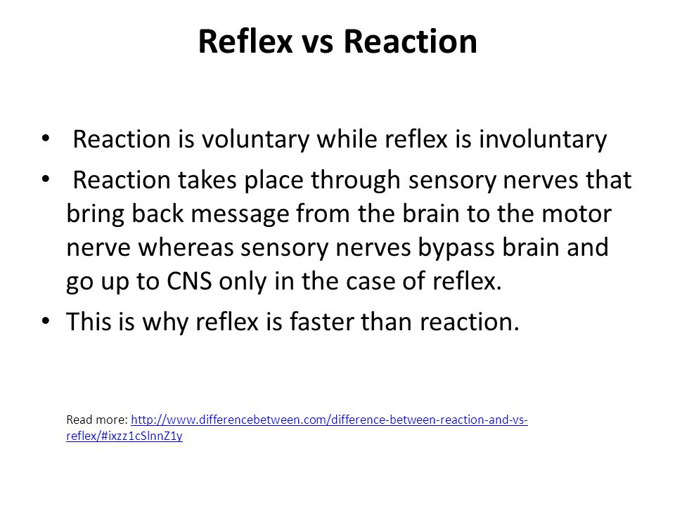 Reflex vs Reaction Reaction is voluntary while reflex is involuntary Reaction takes place through sensory nerves that bring back message from the brai