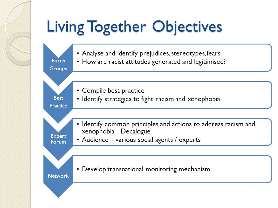 Living Together Objectives Focus Groups Analyse and identify prejudices, stereotypes, fears How are racist attitudes generated and legitimised? Best P