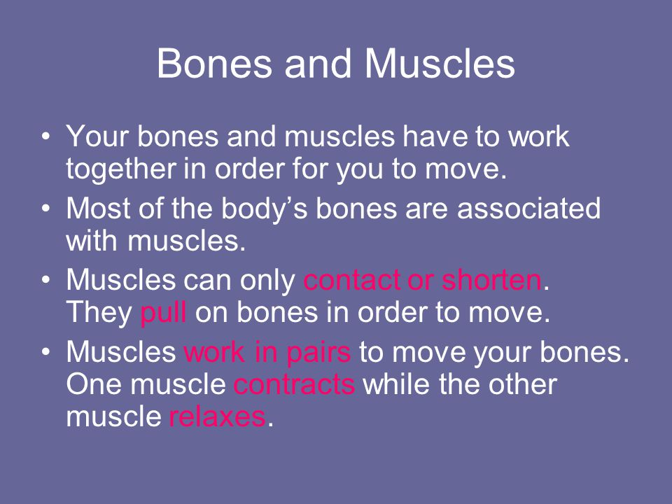 How do muscles move your bones.Use the model to answer the following questions.