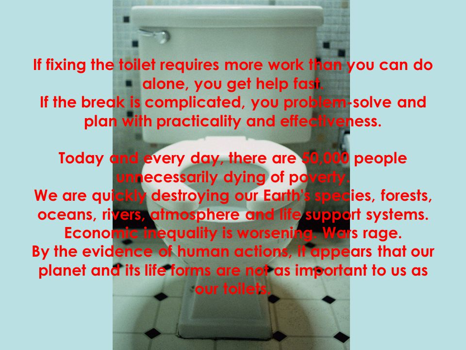 If fixing the toilet requires more work than you can do alone, you get help fast.
