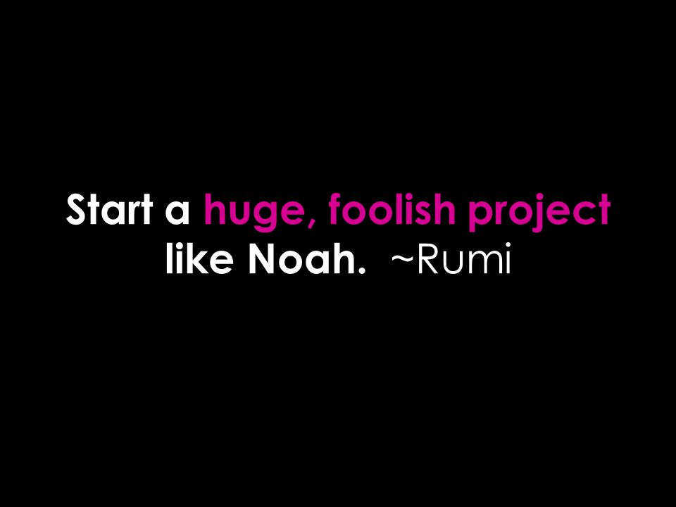 Start a huge, foolish project like Noah. ~Rumi