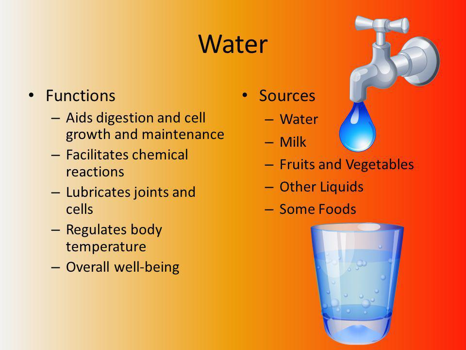 Water Functions – Aids digestion and cell growth and maintenance – Facilitates chemical reactions – Lubricates joints and cells – Regulates body temperature – Overall well-being Sources – Water – Milk – Fruits and Vegetables – Other Liquids – Some Foods