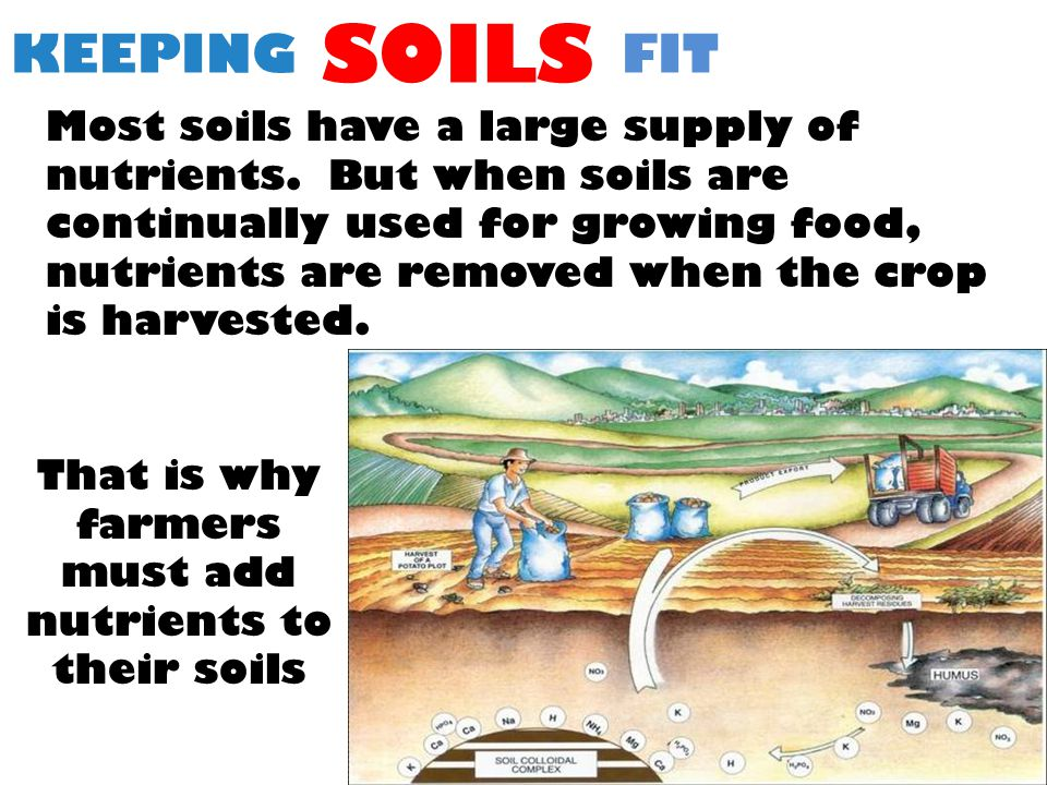 KEEPING SOILS FIT Most soils have a large supply of nutrients.