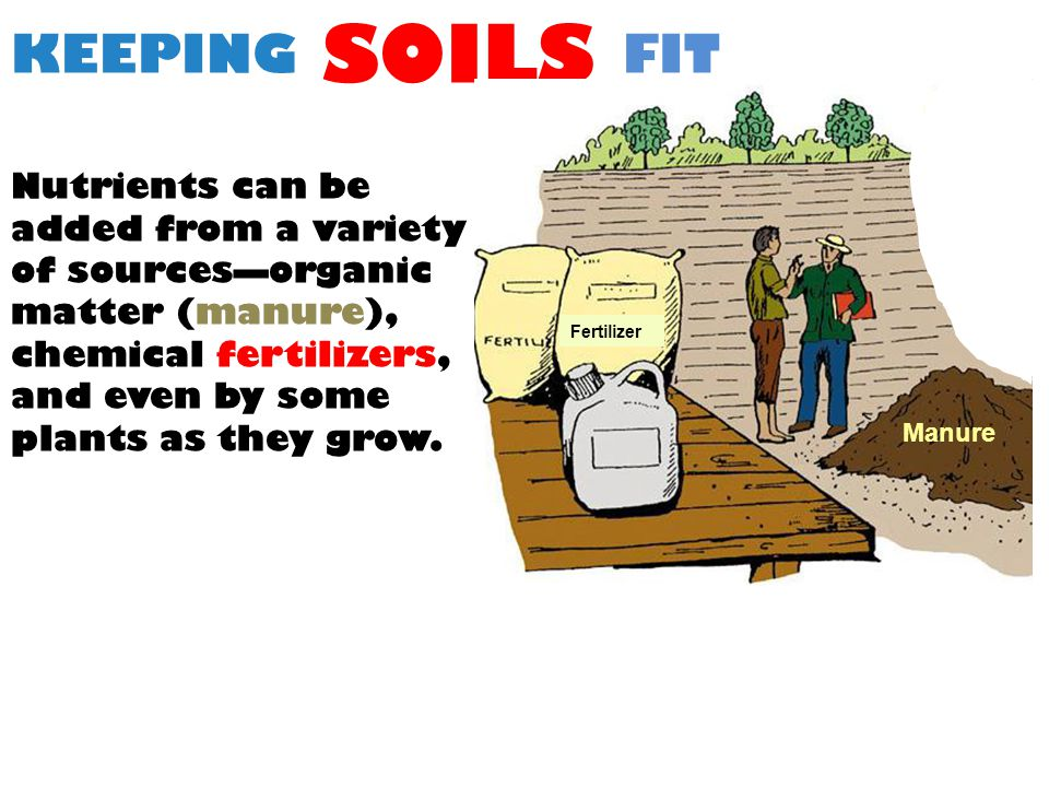 KEEPING SOILS FIT Nutrients can be added from a variety of sources—organic matter (manure), chemical fertilizers, and even by some plants as they grow.