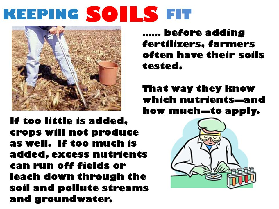 KEEPING SOILS FIT …… before adding fertilizers, farmers often have their soils tested.