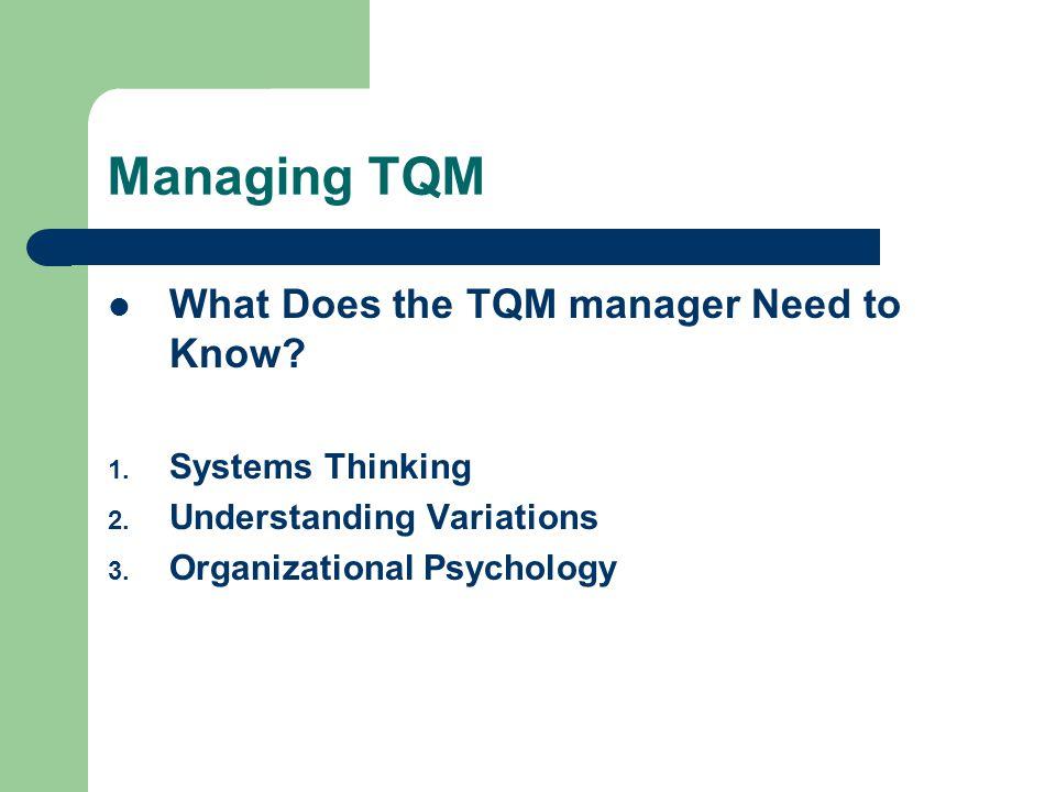 Systems Thinking Effective Management Understanding Variations Organizational Psychology