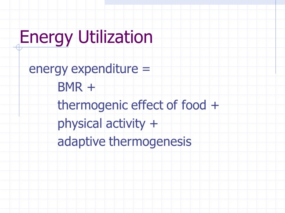 Energy Utilization energy expenditure = BMR + thermogenic effect of food + physical activity + adaptive thermogenesis
