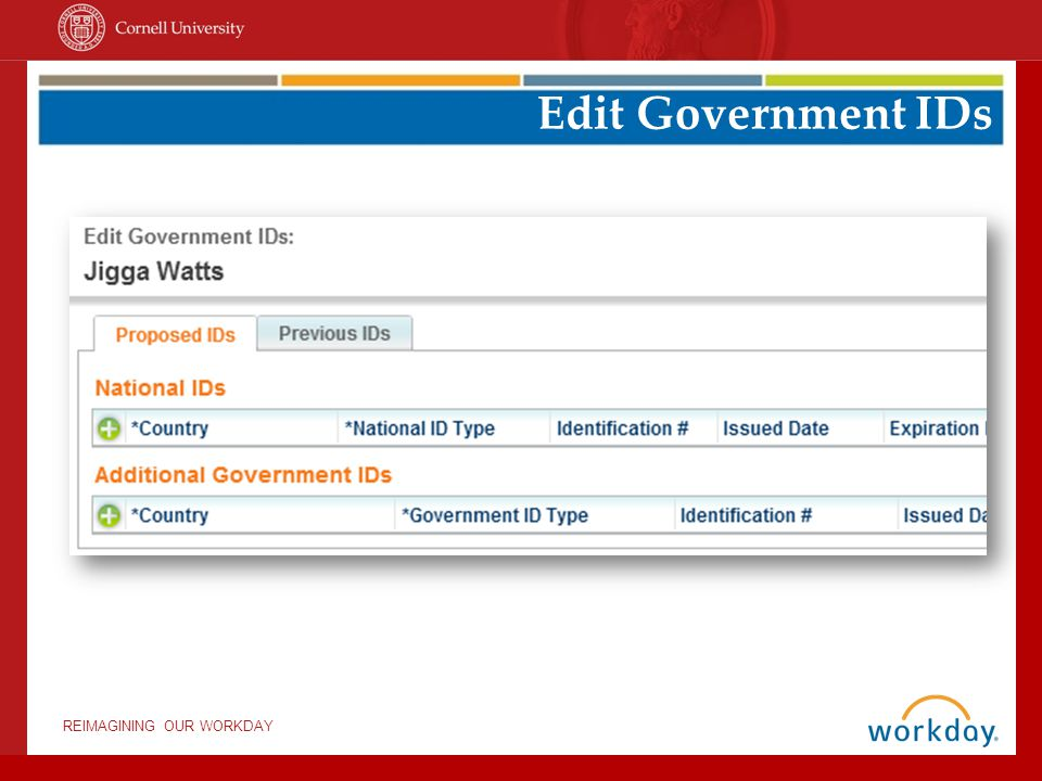 REIMAGINING OUR WORKDAY Edit Government IDs