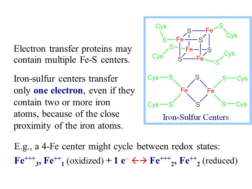 E.g., a 4-Fe center might cycle between redox states: Fe +++ 3, Fe ++ 1 (oxidized) + 1 e   Fe +++ 2, Fe ++ 2 (reduced) Electron transfer proteins m