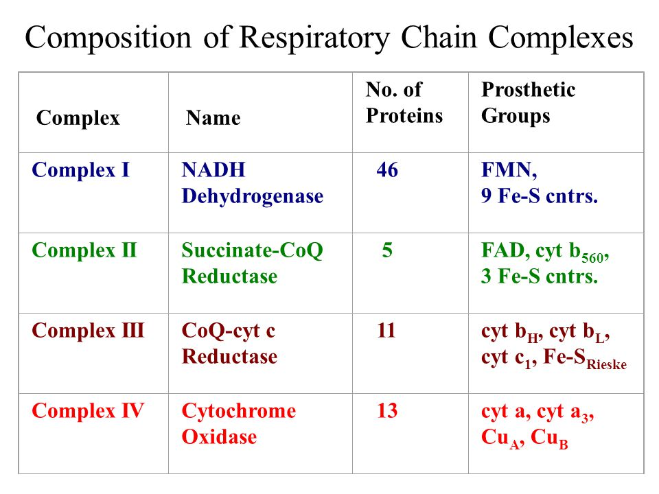 Composition of Respiratory Chain Complexes Complex Name No. of Proteins Prosthetic Groups Complex INADH Dehydrogenase 46FMN, 9 Fe-S cntrs. Complex IIS