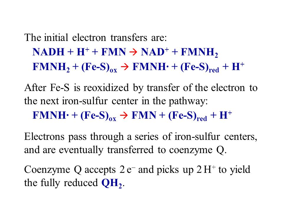 The initial electron transfers are: NADH + H + + FMN  NAD + + FMNH 2 FMNH 2 + (Fe-S) ox  FMNH· + (Fe-S) red + H + After Fe-S is reoxidized by transfer of the electron to the next iron-sulfur center in the pathway: FMNH· + (Fe-S) ox  FMN + (Fe-S) red + H + Electrons pass through a series of iron-sulfur centers, and are eventually transferred to coenzyme Q.