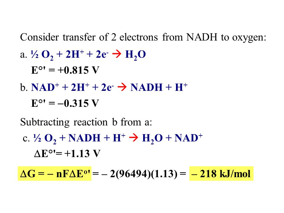 Electron Carriers NAD + /NADH and FAD/FADH 2 were introduced earlier.