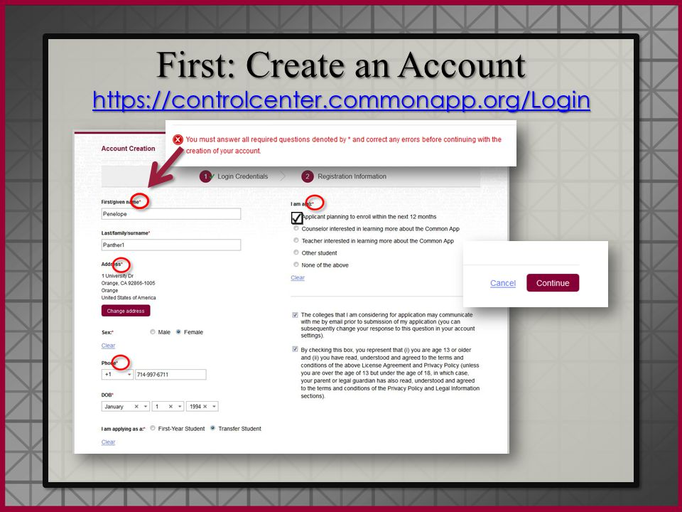 Common App The Common Application itself has six sections: Profile, Family, Education, Testing, Activities and Writing From the Profile tab you will find 8 subsections, beginning with Personal Information and ending with Common App Fee Waiver.