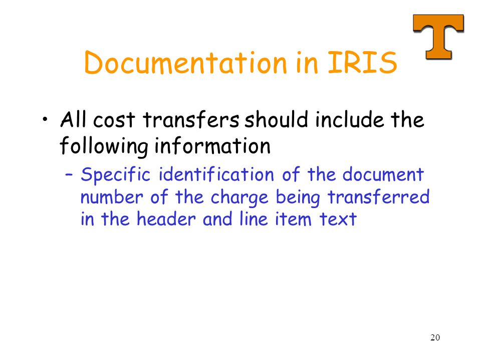 20 Documentation in IRIS All cost transfers should include the following information –Specific identification of the document number of the charge being transferred in the header and line item text