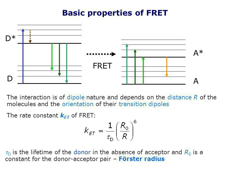 Basic properties of FRET D D* A A* FRET The interaction is of dipole nature and depends on the distance R of the molecules and the orientation of thei