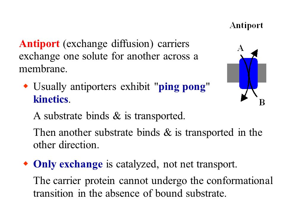 A substrate binds & is transported. Then another substrate binds & is transported in the other direction.  Only exchange is catalyzed, not net transp