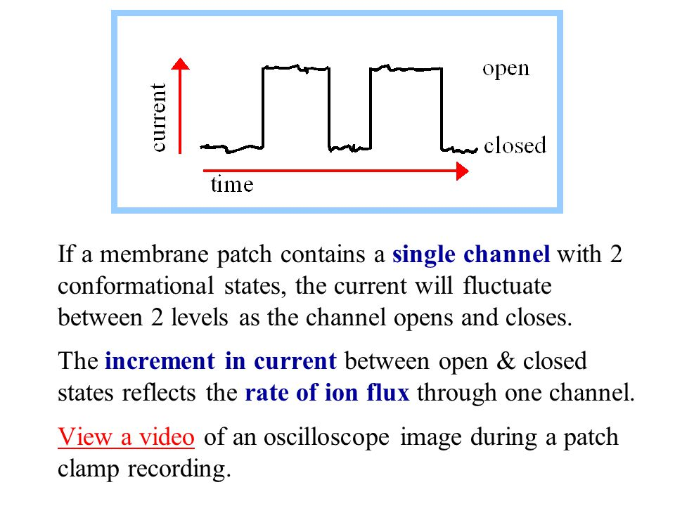 If a membrane patch contains a single channel with 2 conformational states, the current will fluctuate between 2 levels as the channel opens and close