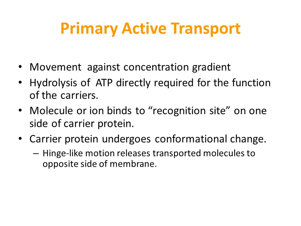Primary Active Transport Movement against concentration gradient Hydrolysis of ATP directly required for the function of the carriers. Molecule or ion